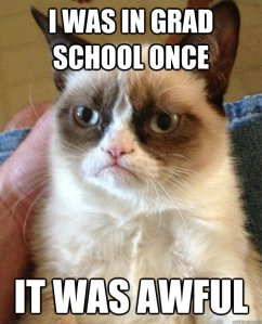 Okay, maybe not awful...but I could identify with grumpy cat sometimes!